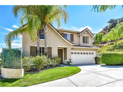 Castaic Single Family Home For Sale: 31318 Countryside Lane