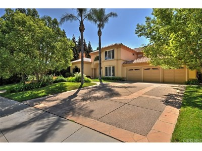 Calabasas Single Family Home For Sale: 25852 Shady Grove Place