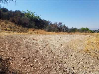 Newhall Residential Lots & Land For Sale: 24901 Bella Vista Drive