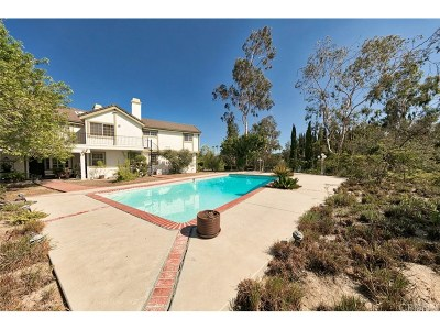 Woodland Hills Single Family Home For Sale: 19943 Redwing Street