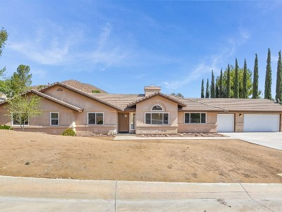 Acton Single Family Home For Sale: 2675 Kashmere Canyon Road