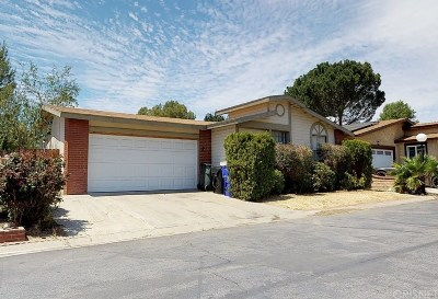 Castaic Single Family Home For Sale: 31927 Quartz Lane