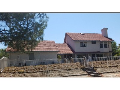Castaic Single Family Home For Sale: 30541 Remington Road