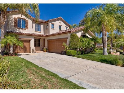 Stevenson Ranch Single Family Home For Sale: 26303 Mitchell Place