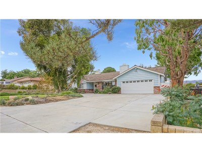Castaic Single Family Home For Sale: 27829 Parker Road