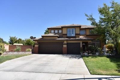 Lancaster Single Family Home For Sale: 6202 West Avenue J3