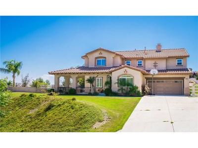 Castaic Single Family Home For Sale: 30086 Valley Glen Street