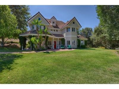 Thousand Oaks Single Family Home For Sale: 455 Manzanita Lane
