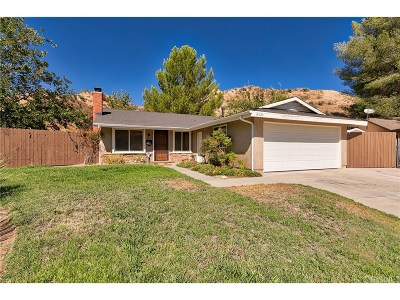 Canyon Country Single Family Home For Sale: 14625 Mums Meadow Court