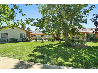 Agua Dulce Single Family Home For Sale: 35400 Thomas Road
