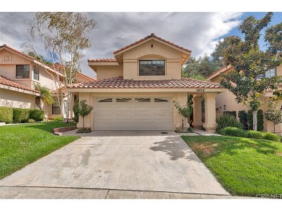 Canyon Country Single Family Home For Sale: 29314 Gary Drive