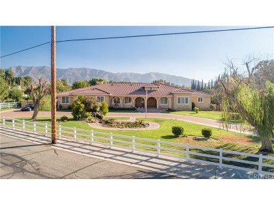 Sand Canyon (SAND) Single Family Home For Sale: 15770 Iron Canyon Road