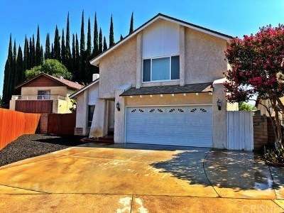 Winnetka Single Family Home For Sale: 20204 Blythe Street