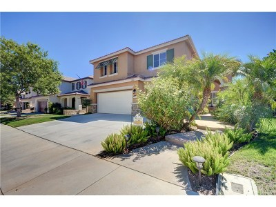 Castaic Single Family Home For Sale: 29082 Madrid Place