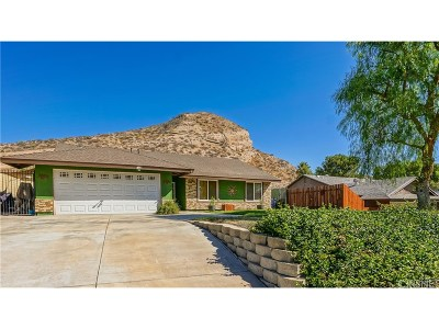 Canyon Country Single Family Home For Sale: 30408 Abelia Road