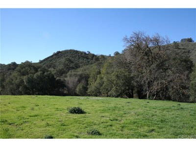 Agoura Hills Residential Lots & Land For Sale: 6481 Chesebro Road