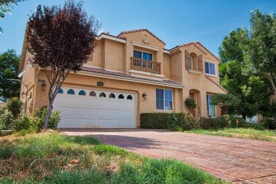 Palmdale Single Family Home For Sale: 39025 Pacific Highland Street