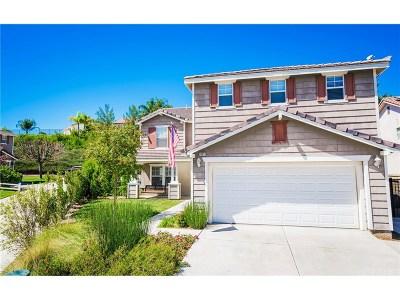 Castaic Single Family Home For Sale: 30011 Penrose Lane