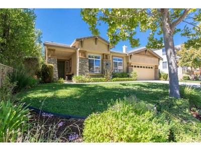 Saugus Single Family Home For Sale: 28517 Hidden Hills Drive