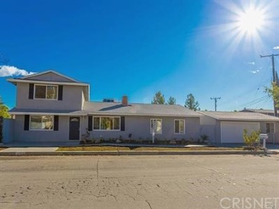 Canyon Country Single Family Home For Sale: 17812 Silverstream Drive