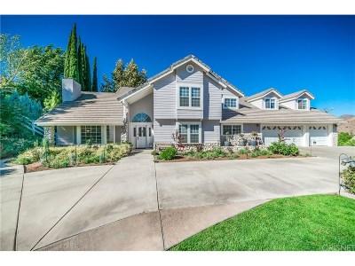Acton Single Family Home For Sale: 3947 Sourdough Road