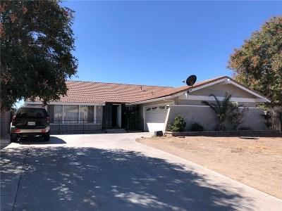 Lancaster Single Family Home For Sale: 1236 Donatello Street