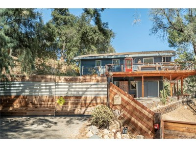 Topanga Single Family Home For Sale: 2090 Topanga Skyline Dr