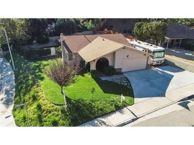 Saugus Single Family Home For Sale: 27419 Catala Avenue