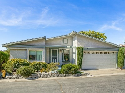 Castaic Single Family Home For Sale: 31945 Cinnabar Lane