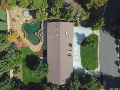 Northridge Single Family Home For Sale: 9407 Beckford Avenue