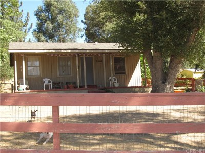 Los Angeles County Single Family Home For Sale: 8805 Elizabeth Lake Road