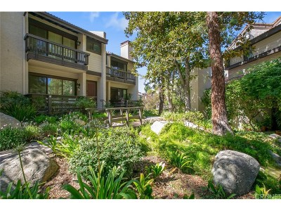 Woodland Hills Condo/Townhouse Sold: 21801 Burbank Boulevard #68