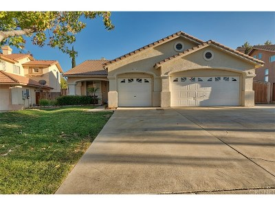 Castaic Single Family Home For Sale: 28412 Oak Valley Road