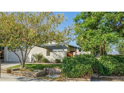 Castaic Single Family Home For Sale: 28003 Banjo Circle