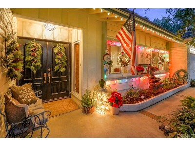 Simi Valley Single Family Home For Sale: 1026 Carmel Drive