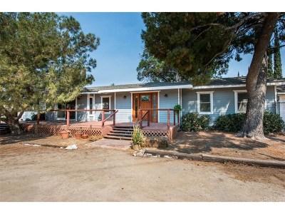 Shadow Hills Single Family Home For Sale: 11091 McBroom Street