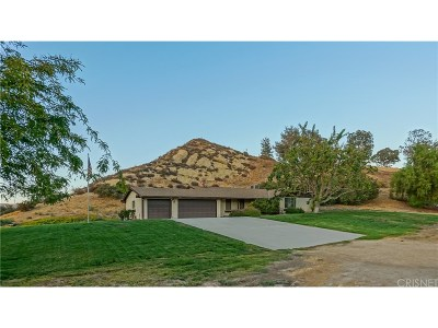 Canyon Country Single Family Home For Sale: 16301 Vasquez Canyon Road