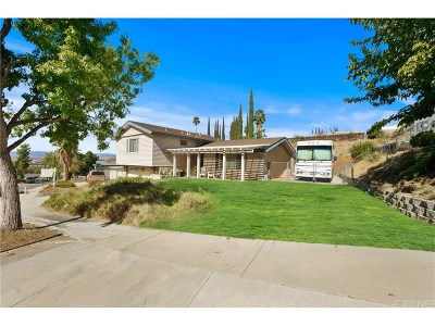Newhall Single Family Home For Sale: 19237 Friendly Valley