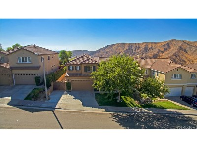 Canyon Country Single Family Home For Sale: 28539 Linda Vista Street