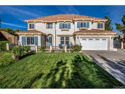 Palmdale Single Family Home For Sale: 40903 Knoll Drive
