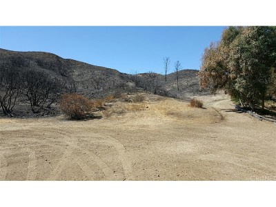 Canyon Country Residential Lots & Land For Sale: 26385 Josel Drive