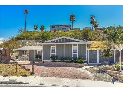 Newhall Single Family Home For Sale: 19206 Maplebay Court