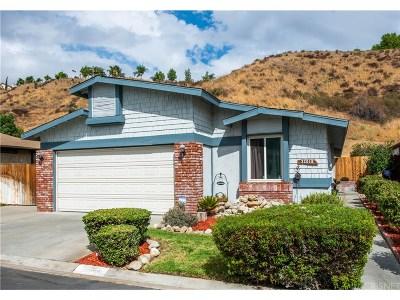 Castaic Single Family Home For Sale: 32018 Quartz Lane