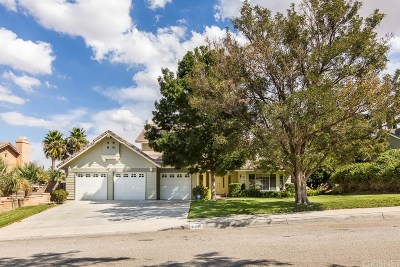 Palmdale Single Family Home For Sale: 41240 Myrtle Street