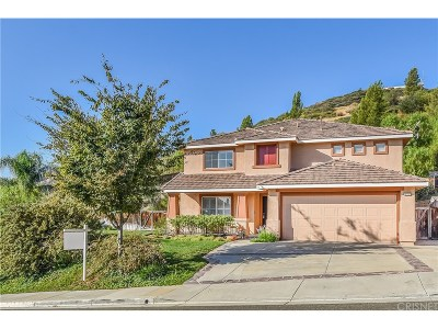 Castaic Single Family Home For Sale: 32717 Ridge Top Lane