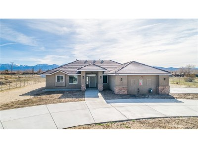 Littlerock Single Family Home For Sale: 10646 East Ave R10