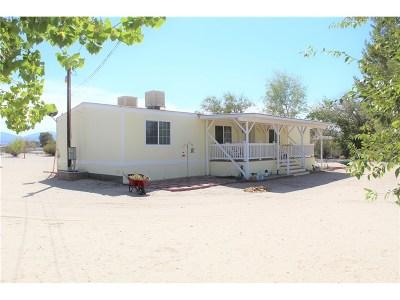 Littlerock Single Family Home For Sale: 11324 East Avenue R4