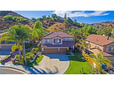 Castaic Single Family Home For Sale: 30411 Star Canyon Place