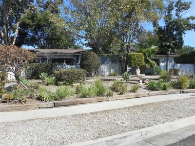 Northridge Single Family Home For Sale: 17101 Stare Street