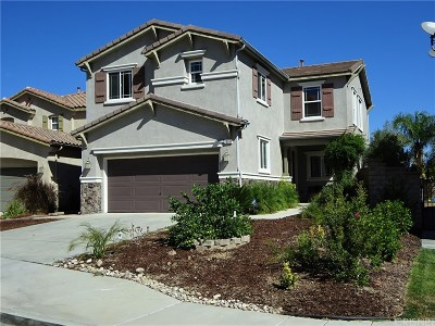 Saugus Single Family Home For Sale: 20051 Christopher Lane